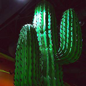 Объемные кактусы